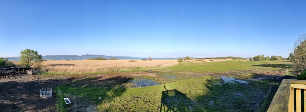 Kilátás a Fenékpusztai madárgyűrűző állomás kilátójából